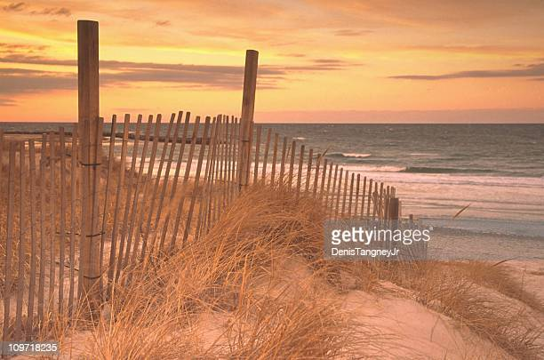 Picket Fence Along Sand Dune in Grass at Beach
