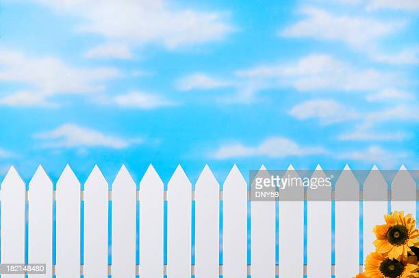 Picket Fence & Sky& Sunflowers