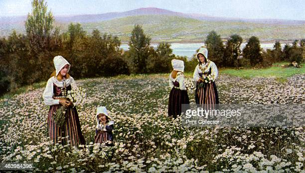 Picking flowers in a meadow near Leksand, Sweden, c1923. Leksand is a town of the district north of Svealand called Dalecarlia. In the distance is...