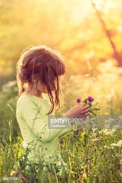 picking flowers - buiten de steden gelegen gebied stockfoto's en -beelden