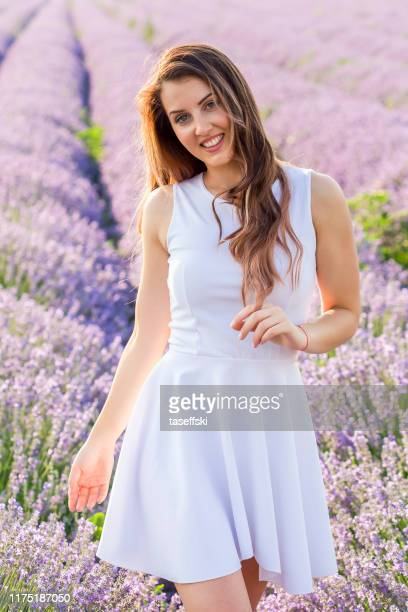 picking lavender - white dress stock pictures, royalty-free photos & images