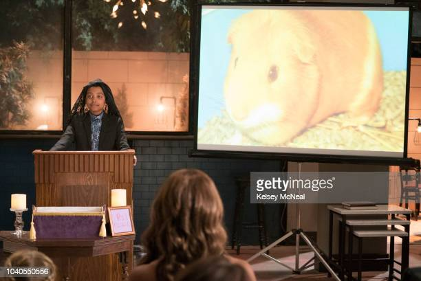 PARENTS Pickle After seeing the way Douglas and the twins are barely affected by the death of their guinea pig Pickle Poppy encourages Douglas to...
