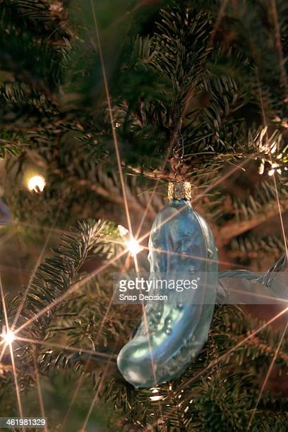 pickle ornament hanging on christmas tree - pickles stock photos and pictures