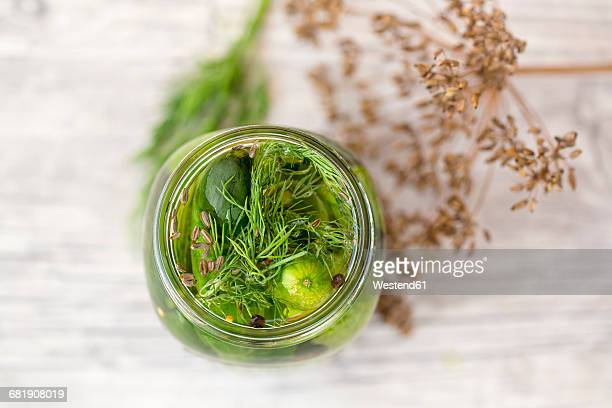 Pickled gherkins in jar with mustard seeds, fennel seeds and dill