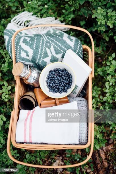 Picknick, basket