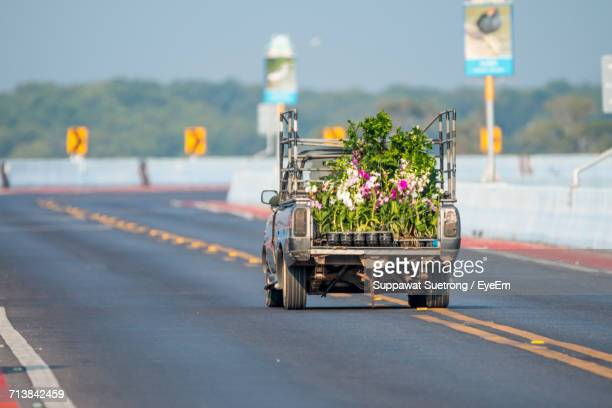 Pick-Up Truck Carrying Potted Plants On Street