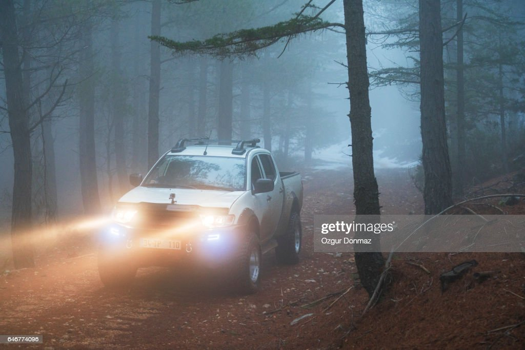 Pick-up truck on forest road : Stock Photo