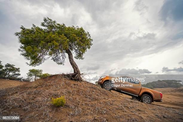 4X4 Pick-up Truck