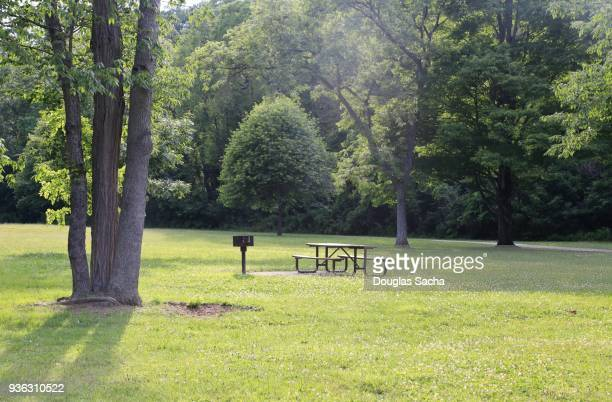 picnic area at the park - natural parkland stock pictures, royalty-free photos & images