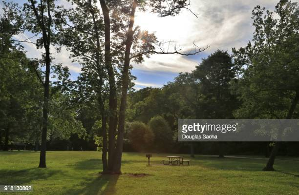 Picnic area in a rural city park
