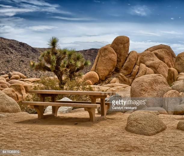 Picnic Area in rocky landscape in Joshua Tree National Park, California