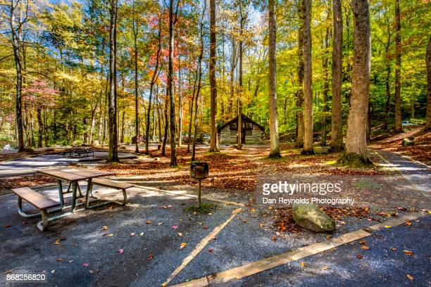 Picnic area  in the Great Smokey Mountains National Park,USA