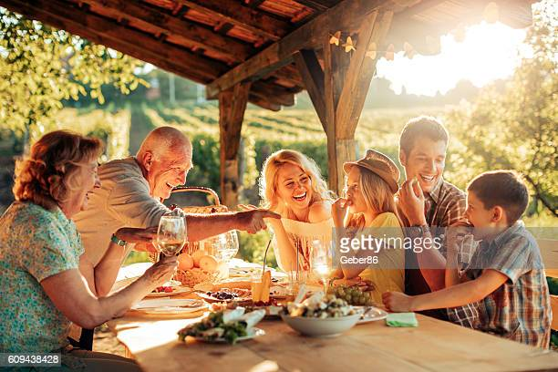 picnic at a vineyard - multi generation family stock pictures, royalty-free photos & images