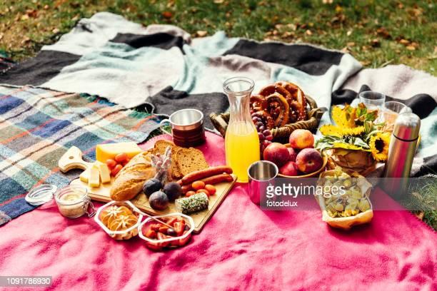 公園でピクニック - ピクニック ストックフォトと画像