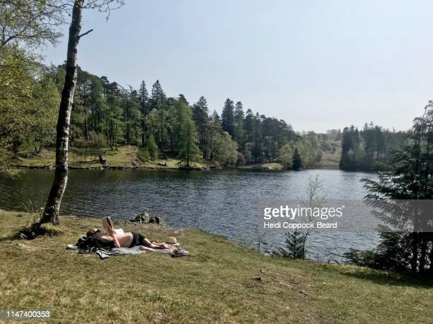 picnic at tarn hows - heidi coppock beard stock pictures, royalty-free photos & images