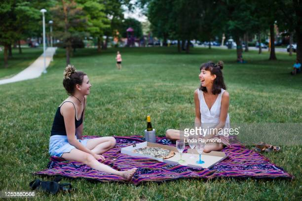 picnic at the park - picnic stock pictures, royalty-free photos & images
