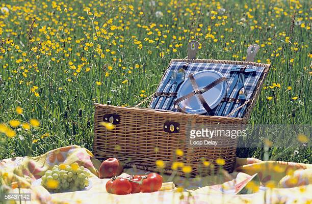picnic basket and fruit in meadow - picnic basket stock pictures, royalty-free photos & images