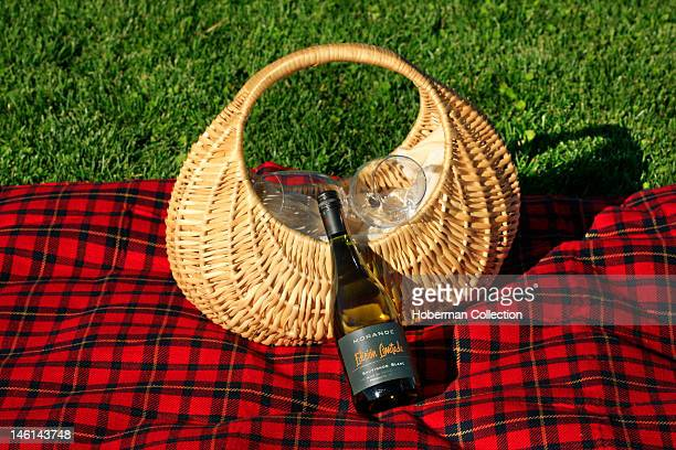 Picnic Basket and Red Picnic Blanket Chile