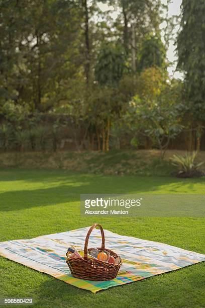 Picnic basket on blanket in garden
