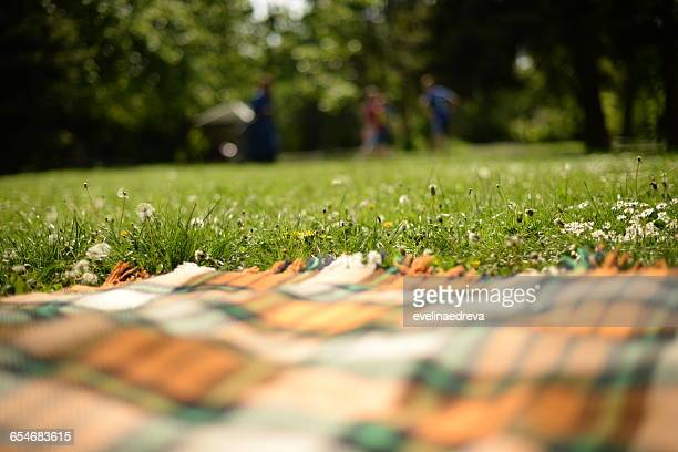 picnic blanket on grass in park - picknick stockfoto's en -beelden