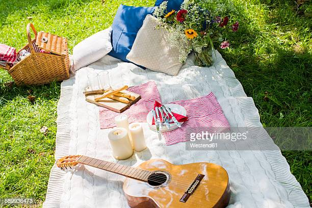 Picnic blanket with guitar, candles and cushions on a meadow