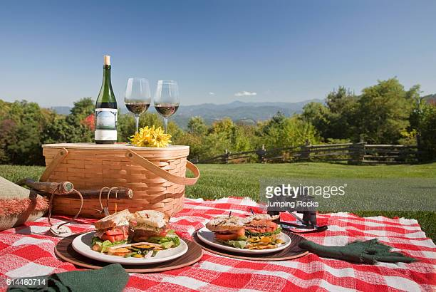 Picnic food on plates on red check blanket in rural setting Smoky Mountains North Carolina USA