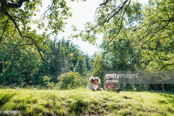 picnic for the girls - travelstock44 stock pictures, royalty-free photos & images