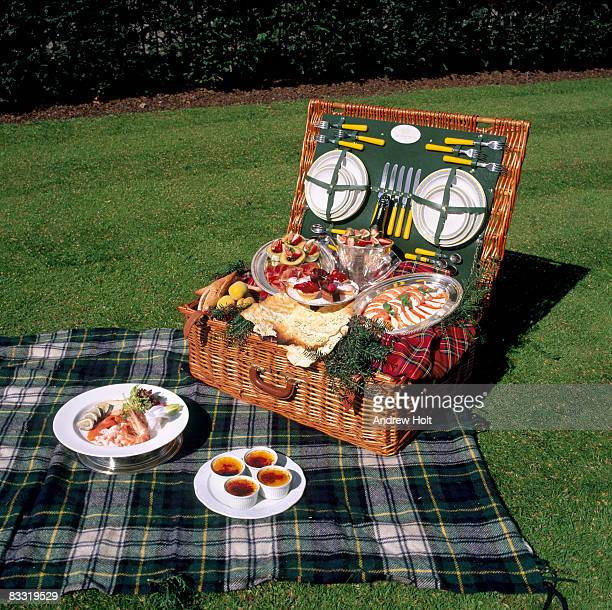 Picnic hamper basket with gourmet food on lawn