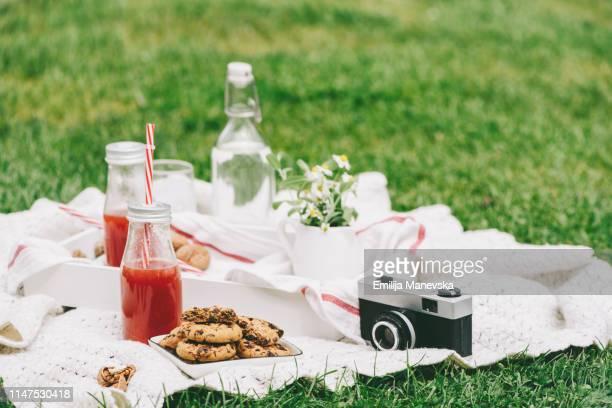 picnic in meadow - pique nique photos et images de collection