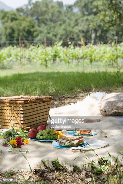 Picnic in sunny field