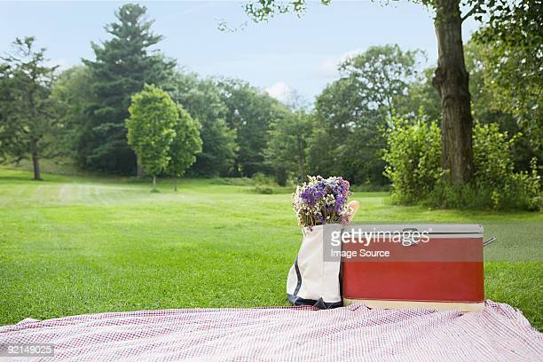 picnic in the park - picnic blanket stock pictures, royalty-free photos & images