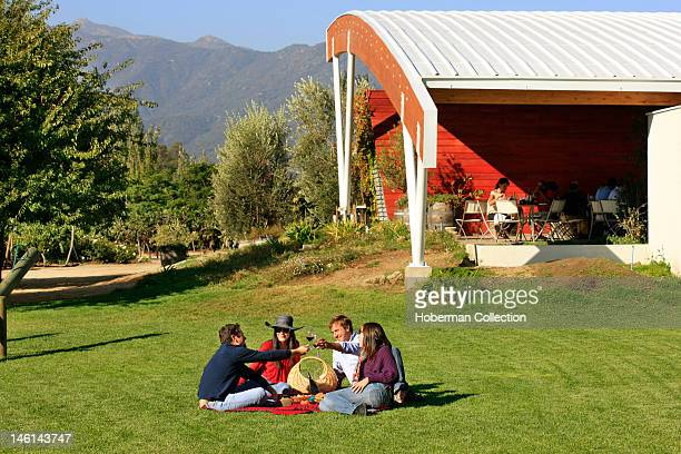 Picnic in the Winelands Chile