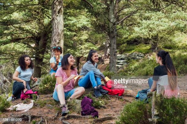 picnic in the woods - british culture stock pictures, royalty-free photos & images