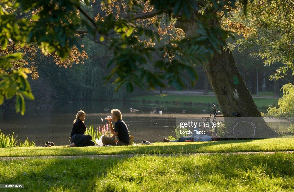 Picnic in Vondelpark in afternoon light. : Stock-Foto