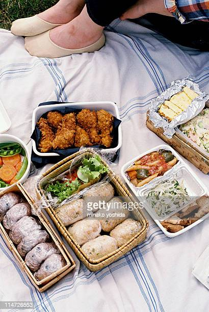 picnic lunch - plastic plate stock photos and pictures