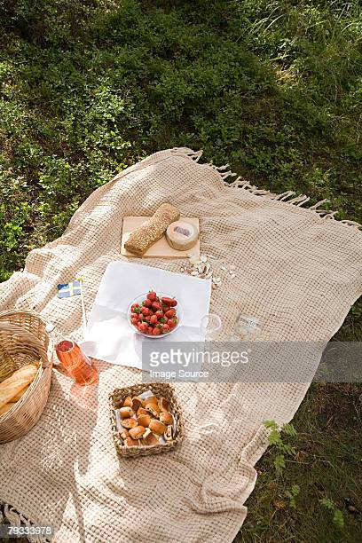 a picnic - picnic blanket stock pictures, royalty-free photos & images