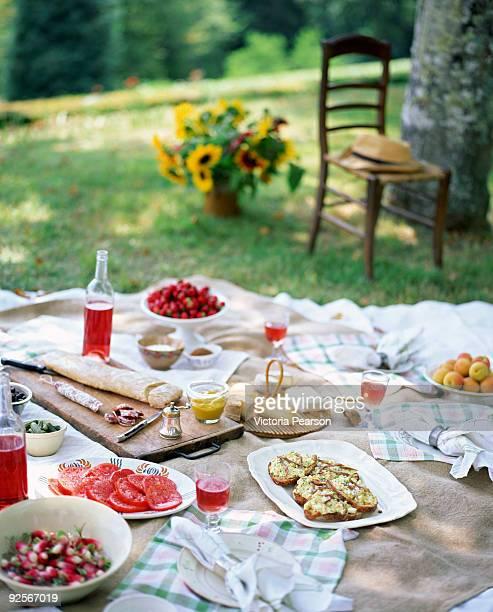 picnic - ピクニック ストックフォトと画像