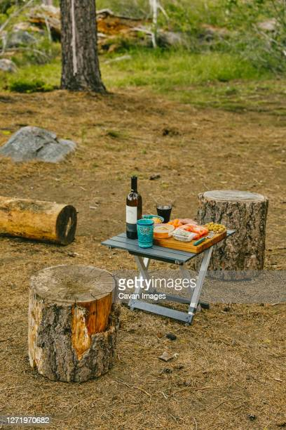 picnic set up on campsite in northern california forest. - wicket stock pictures, royalty-free photos & images