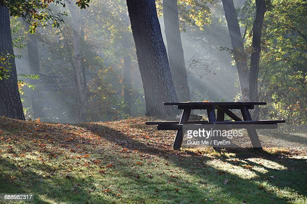 Picnic Table Against Trees On Field At Park