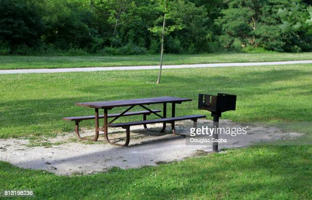 picnic table and cooking grill at a public park - snag tree stock pictures, royalty-free photos & images