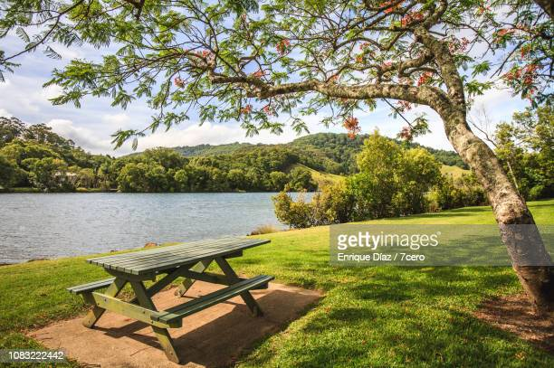 picnic table, flame tree and a perfect lawn, tumbulgum - 川岸 ストックフォトと画像