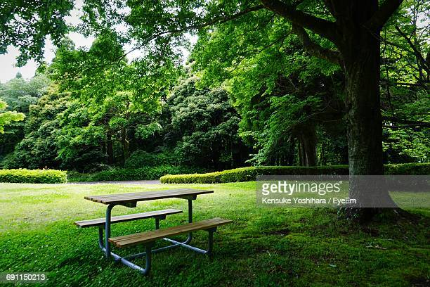 picnic table in park - picnic table stock pictures, royalty-free photos & images