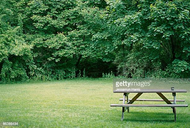 picnic table in park - jessamyn harris stock pictures, royalty-free photos & images