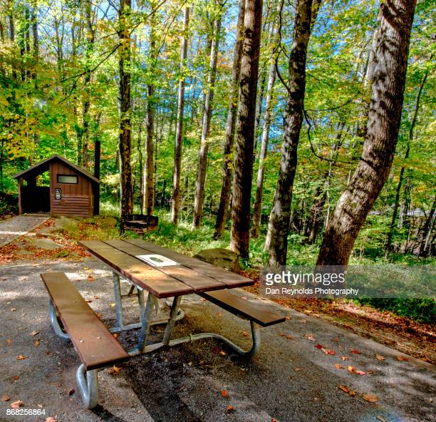 Picnic Table in the Great Smokey Mountains National Park,USA