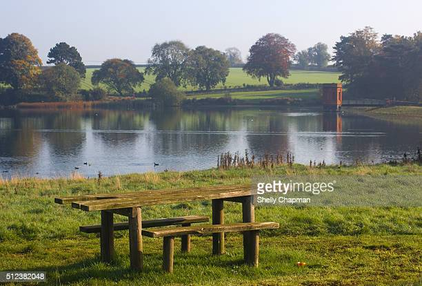 Picnic Table Overlooking the Lake