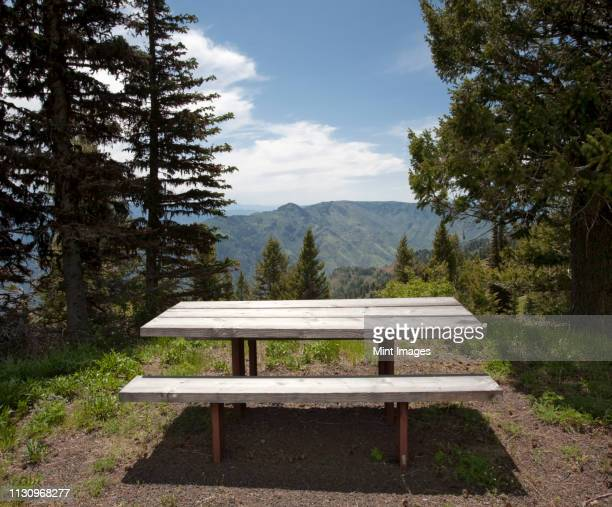 picnic table - picnic table stock pictures, royalty-free photos & images