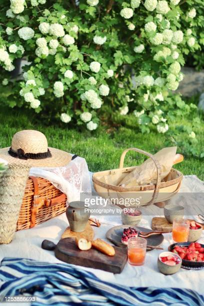 picnic with bread and tea in summer garden - picnic basket stock pictures, royalty-free photos & images