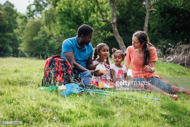 picnic with the children - resting stock pictures, royalty-free photos & images