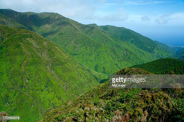 Pico Da Vara Azores Portugal This Mountain Is A Special Protection Area Habitat Of The Endangered Priolo Bird