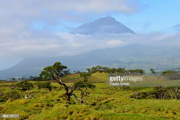 pico mountain, azores, portugal - stratovolcano stock photos and pictures